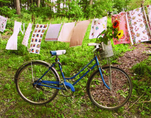 Bike and clothes line